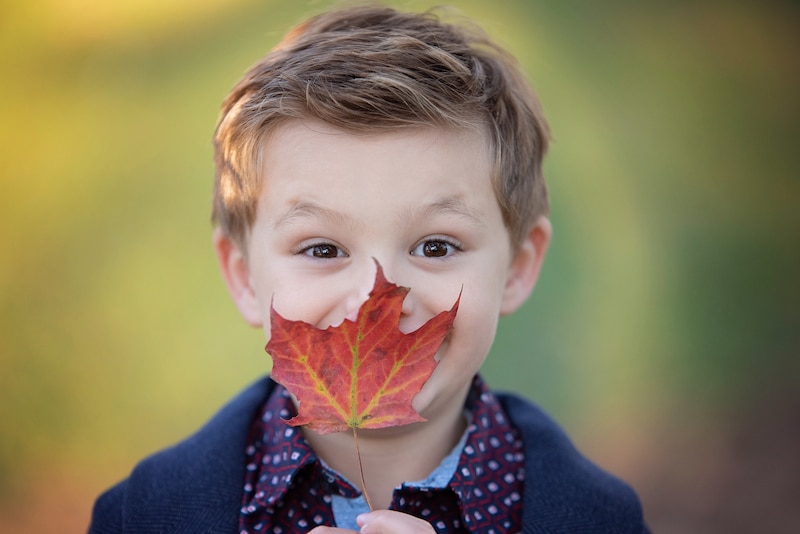 Fall family photo session in Rockford, IL